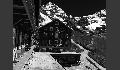 Hotel Bellevue des Alps
