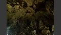 Stalaktiten und Stalagmiten