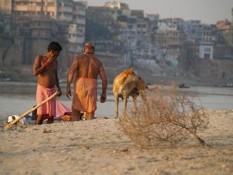 Idylle am Ganges